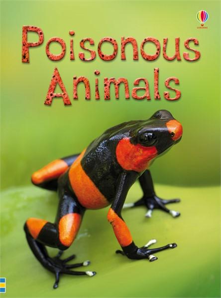 9781409581581-beginners-poisonous-animals