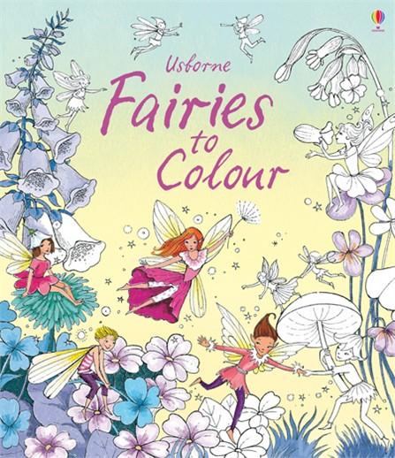 9781409582106-fairies-to-colour