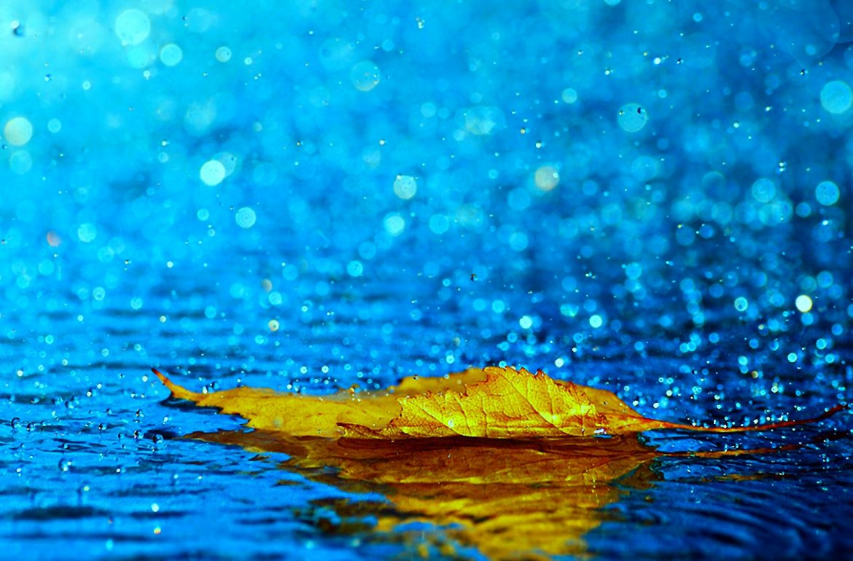 Tu eşti codul meu de ploaie