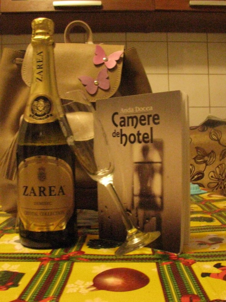 Camere de hotel – Anda Docea (recenzie)